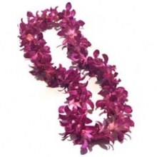 Fuchsia  Orchid Leis 10 days Notice Required  in Powder Springs, GA | PEAR TREE HOME.FLORIST.GIFTS