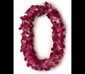 Orchid Leis((( Ready made for pickup only))  Doubles  In A Clear Presentation  Box