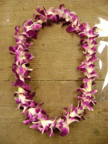Orchid Lei's Lei's
