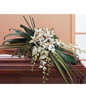 Orchid Opulence  Casket Spray in Amelia Island, FL | ISLAND FLOWER & GARDEN