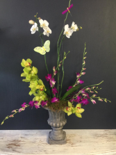 Orchid  Plant and Fresh Cut Arrangement