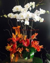 Orchid Planter with seasonal decorations