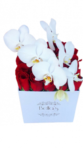Orchid & 25 Rose Box