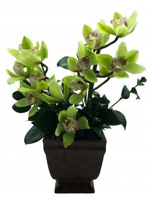 Orchid Serenity Sympathy Floral in Miami, FL | FLOWERTOPIA