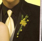 Orchid with grasses and berries Boutonniere