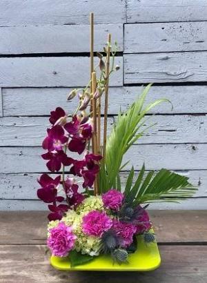 Orchid Zen Garden  in Largo, FL | Rose Garden Florist
