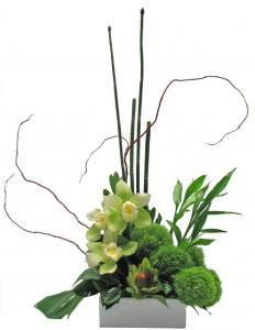 Orchids and Green Poms Garden Tropical Cut Flowers