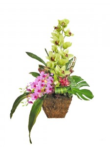 Orchids in natural grass basket Tropical