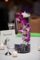 Orchids in the Vase