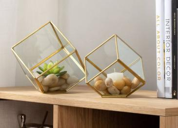 Oro Cubes Air Plant collection