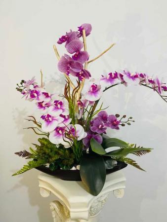orquideas arrangement  tropical