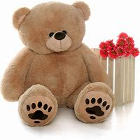 Our Giant Bear Limited quantity
