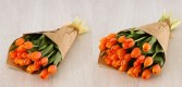 Our Own Tulips Grown in Townshend, VT Wrapped Flowers Natural