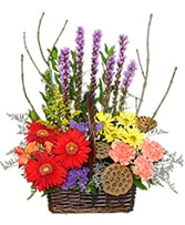 Out Of The Woods Flower Basket in Montgomery, Alabama | LEE & LAN FLORIST