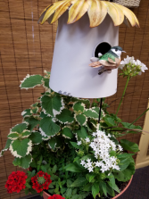 Outdoor planter with Birdhouse
