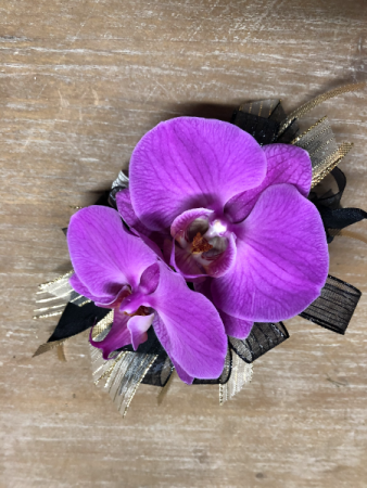 Outstanding Orchids Corsage