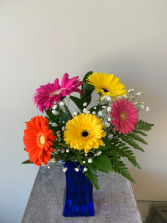 Over the rainbow Gerbera Daisies  Arrangement