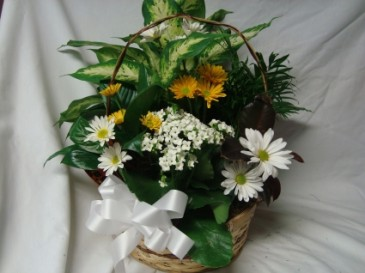 Large Planter with cut flowers added.