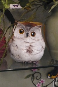 """Owl $22.00  poly stone 5"""" tall"""