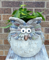 Owl Give a Hoot Planter
