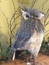 Owl, Large