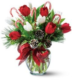 Peppermint Tulips  Vase Arrangement