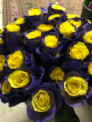 Palisades roses Graduation in Revere, PA | Purple Pansy