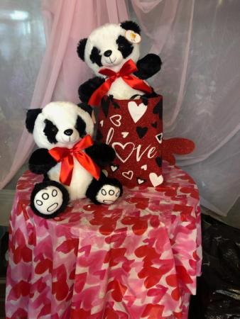 Panda Love w/Tote