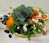 Pansy and Pumpkin Basket