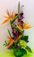 M11 Paradise Blooms