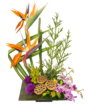 PARADISE GARDEN Floral Arrangement in Winston Salem, NC | RAE'S NORTH POINT FLORIST INC.