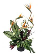 Paradise Garden Flower Arrangement