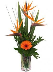 PARADISE SUNSET Tropical Vase