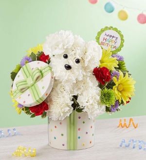 Party Pooch™  in Valley City, OH | HILL HAVEN FLORIST & GREENHOUSE
