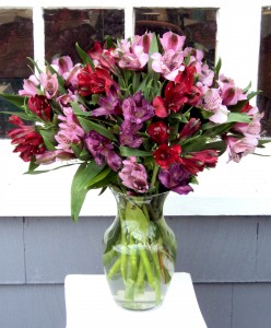 Passion Play Vase Arrangement in North Adams, MA | MOUNT WILLIAMS GREENHOUSES INC