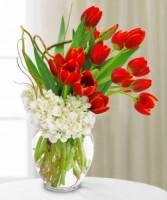 Cheerful Holiday Vased Arrangement Modern