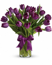 Passion Purple Tulips