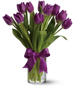 Passionate Purple Tulips H1482A
