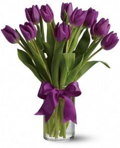 Passionate Purple Tulips  (T148-2A)
