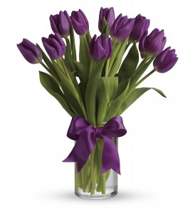 Passionate Purple Tulips T1482A Birthday, Mother's Day, Spring