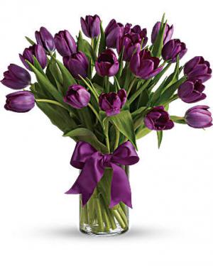 Passionate Tulips  in Sunrise, FL | FLORIST24HRS.COM
