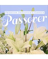 Passover Premium Designer's Choice