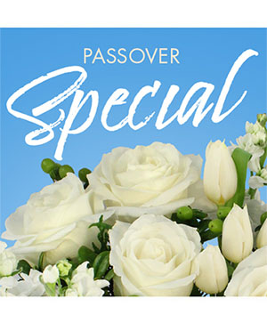 Passover Special Designer's Choice in Klamath Falls, OR | ROSES ARE RED