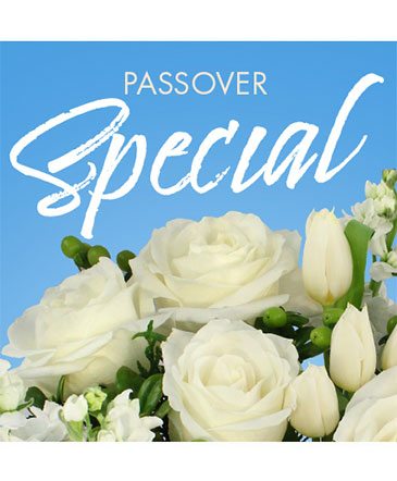 Passover Special Designer's Choice