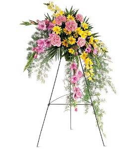 Pastel Crescent Spray  in Presque Isle, ME | COOK FLORIST, INC.