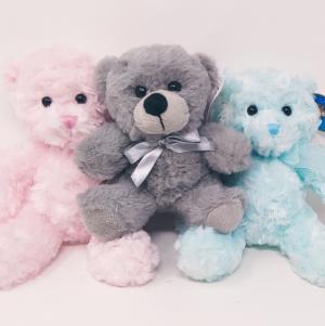 Pastel  Cuddly Plush Bear in Springfield, MO | FLOWERAMA #226