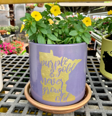Patio Pot Annual Planter