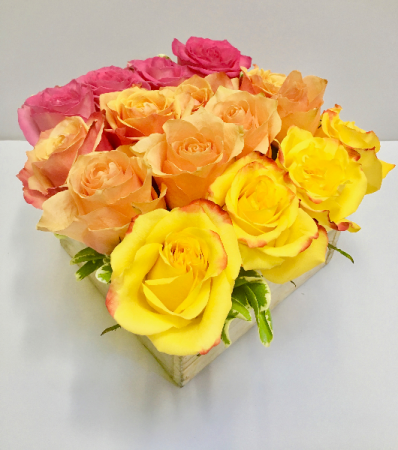 Ombre Collection Your Choice of 4x4 Roses in a Box