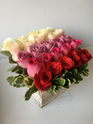 Pave Roses in a Box Colors of your choice in Palo Alto, CA | Village Flower Shoppe