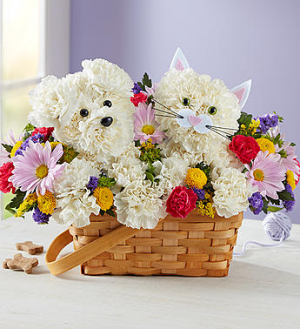 Paw-Some Pals™  in Valley City, OH | HILL HAVEN FLORIST & GREENHOUSE